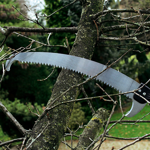 HIGH PRUNING - EXPERT RANGE
