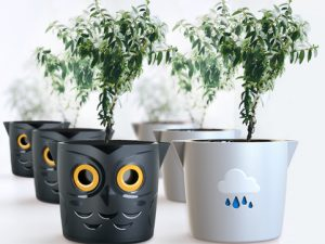 New Pot Takes the Guesswork Out of Watering