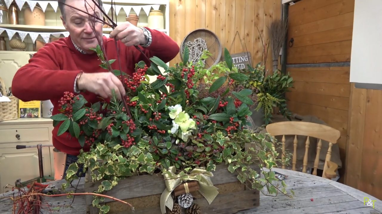 It's the most magical time of the year as Christmas approaches, so as you decks the halls with boughs of holly, give your front door some Christmas love too with an attractively planted Christmas container