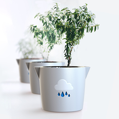 A Houseplant Care Masterclass with Pots & Trowels