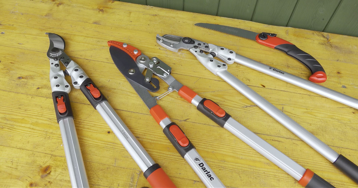 Darlac Heavy Duty Loppers | A Review With Pots & Trowels