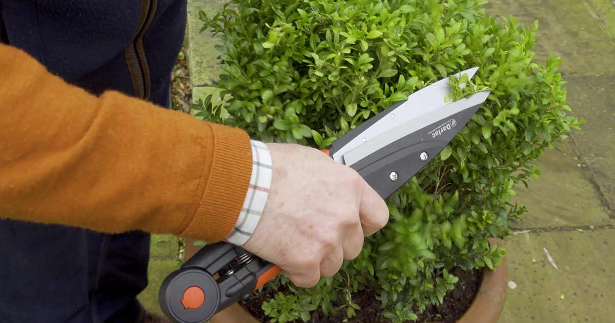 Darlac Garden Shears | A Guide to Garden Tools with Pots & Trowels