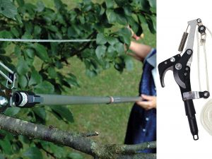 The Darlac Telescopic Tree Pruner Range with Pots & Trowels