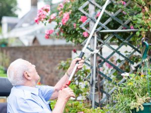 Darlac Donates Tools to the Chelsea Pensioners Summer Gardening Programme